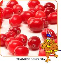 Thanksgiving Cranberry